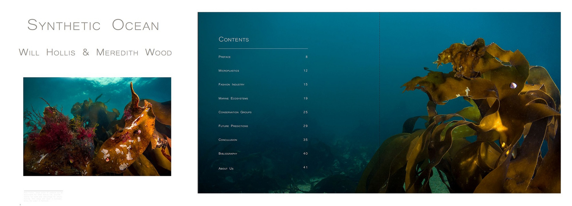 Synthetic Ocean - A Photographic & Research book in collaboration with Will Hollis