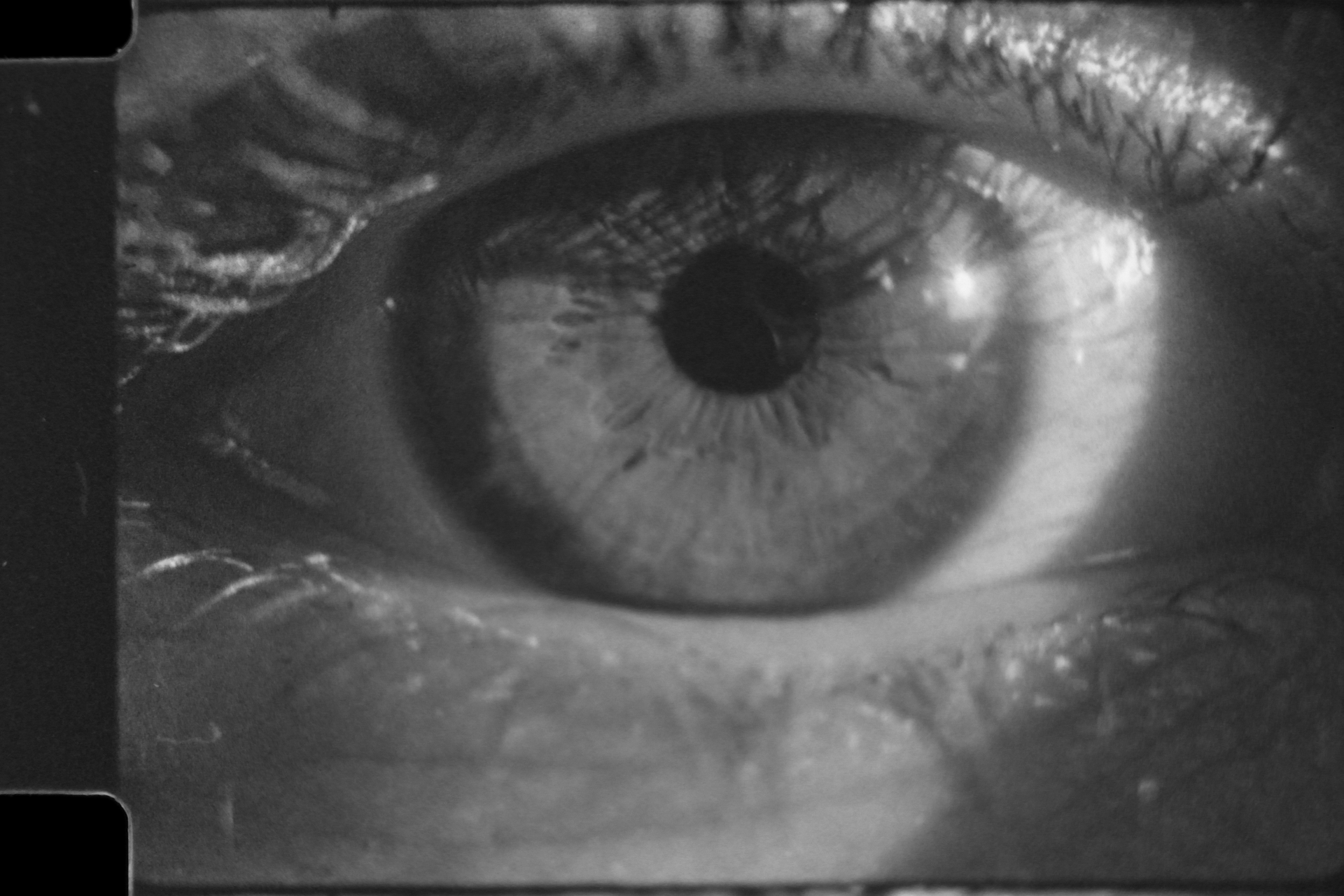 Ocularcentrism; pupils as 'indicators'; 'Presence' through the Screen