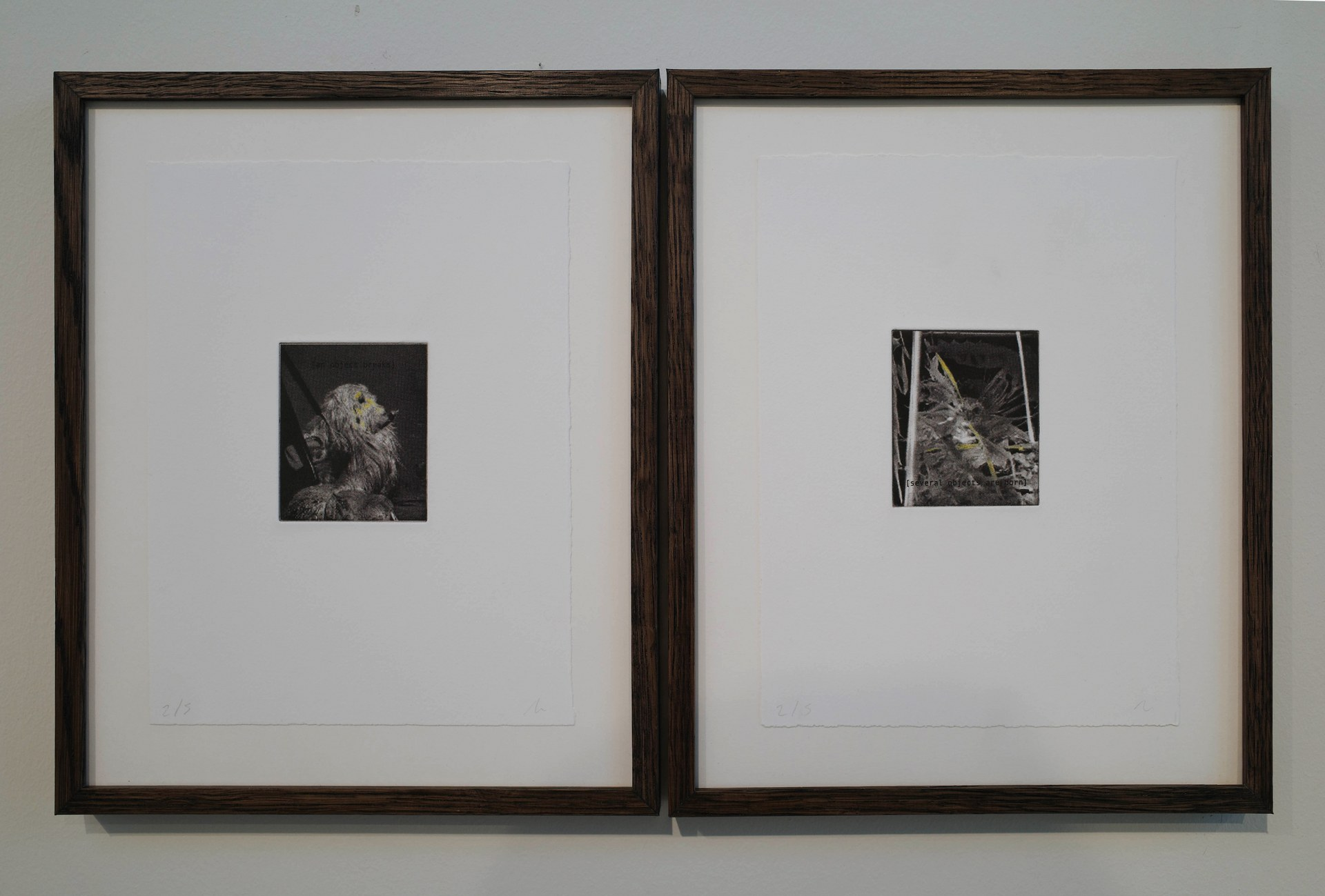 Detail of 'untitled (an object breaks)' + 'untitled (several objects are born)', etching on cotton paper