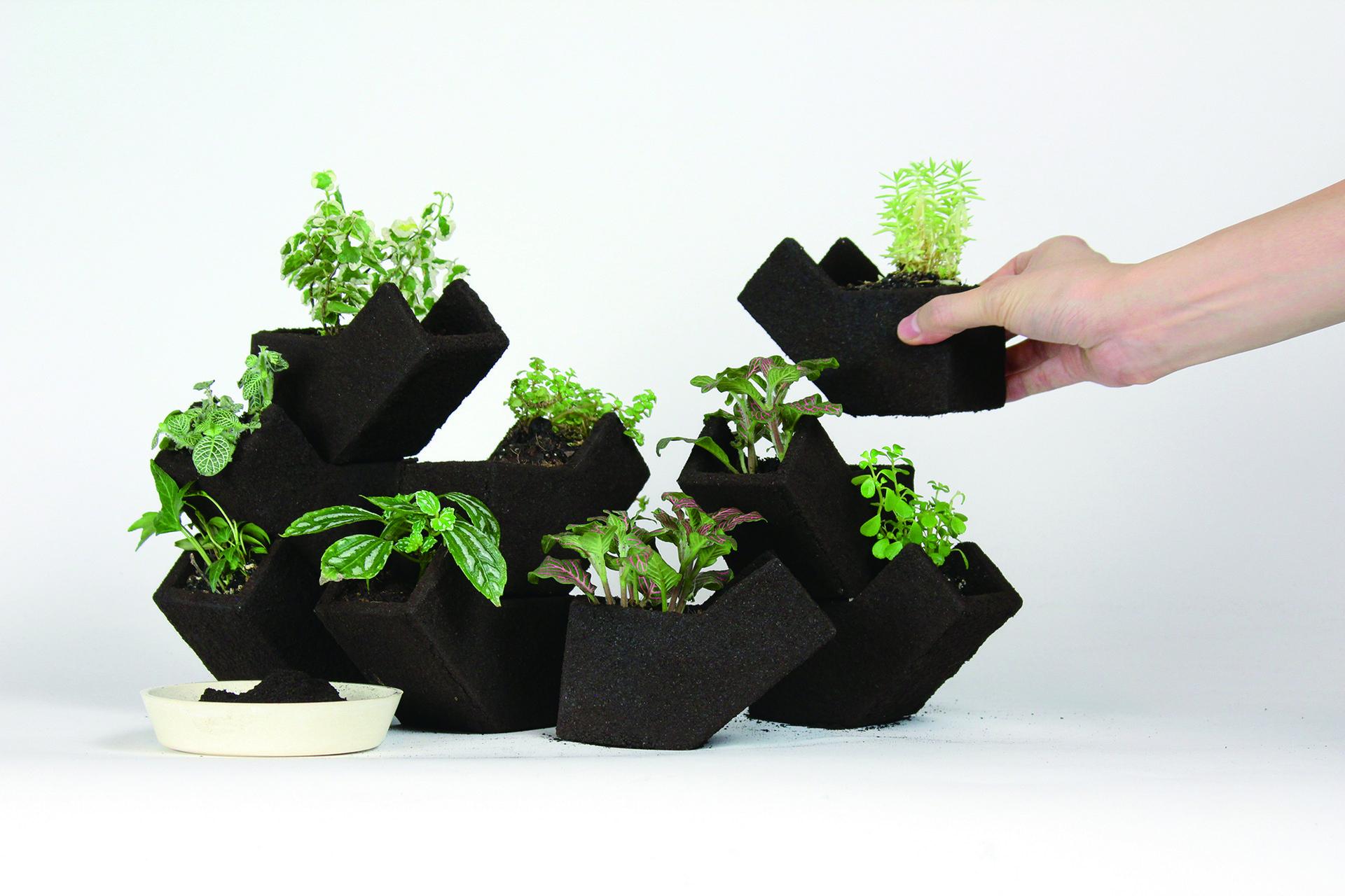It is your vertical garden.