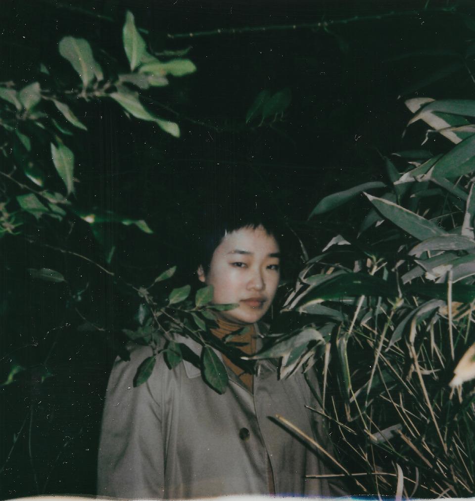 Fang Echo Wang