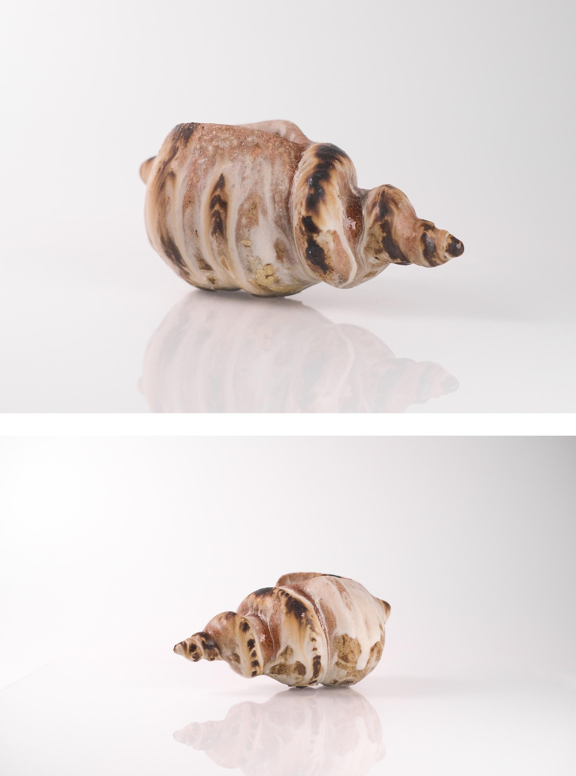 Ceramic shell _ 2021