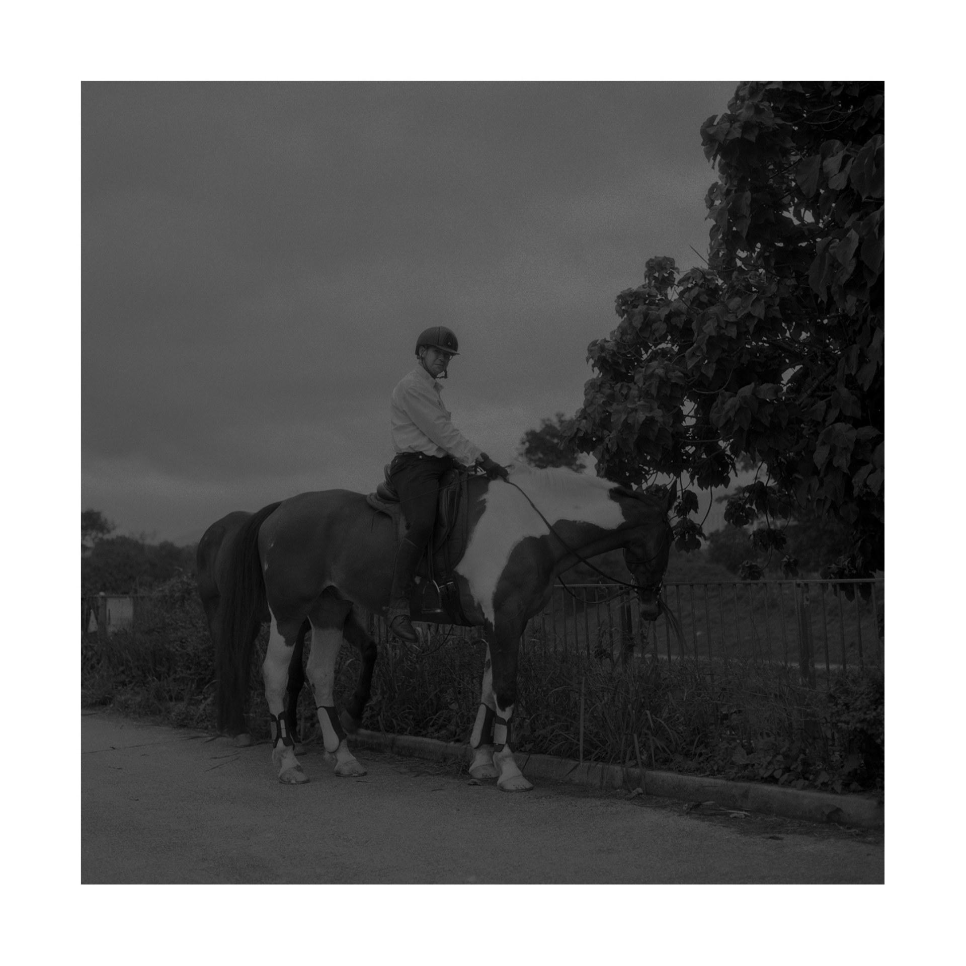 Jockey and his horse, 2020