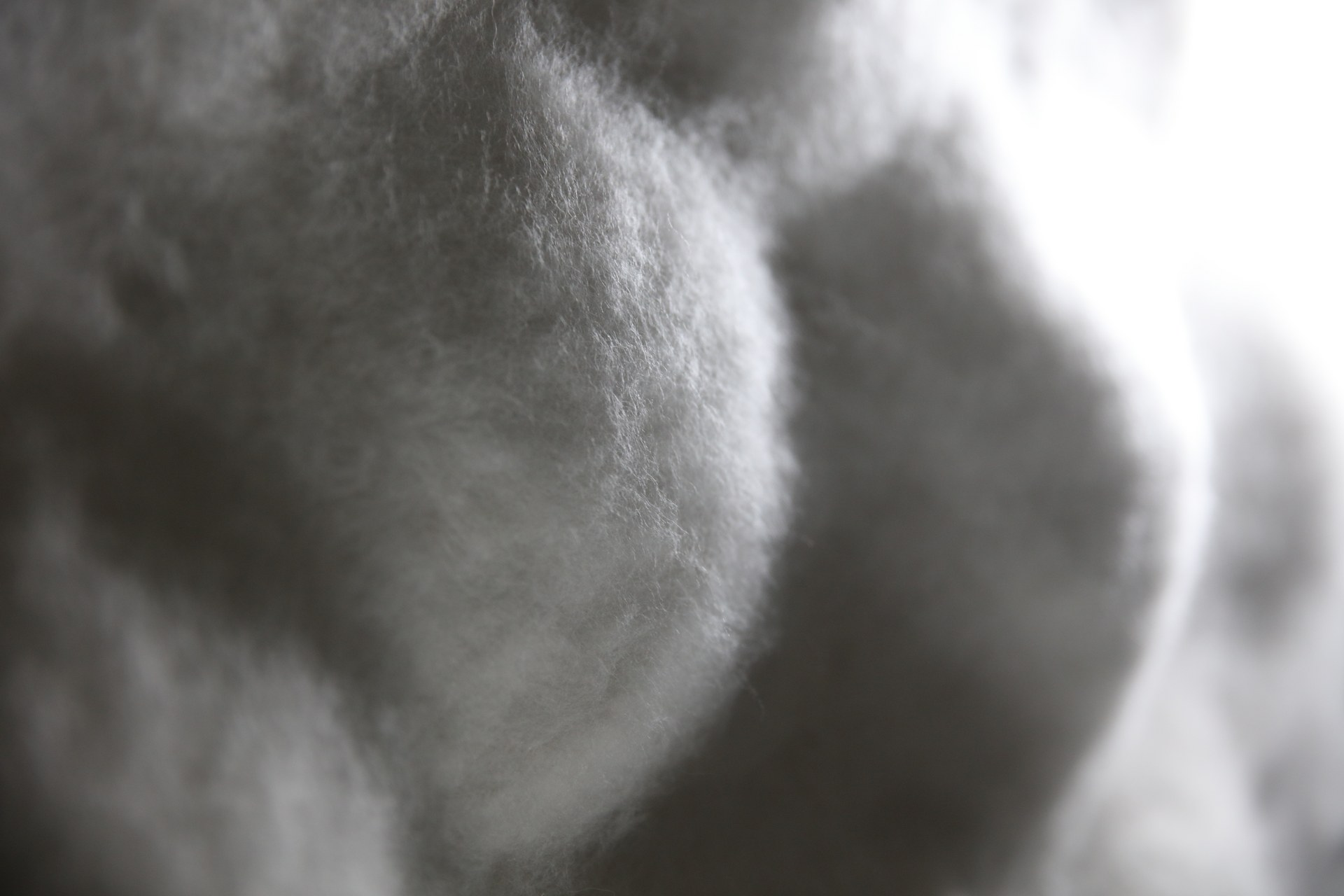 The detail of Tenderness No.1