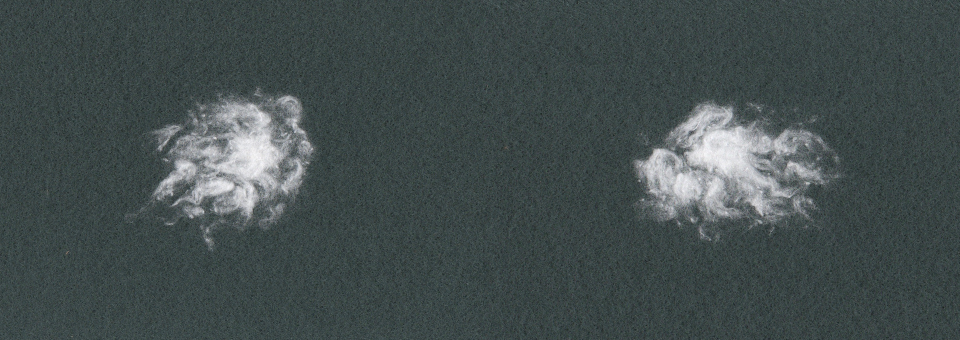 Lanugo No.3 (2020)