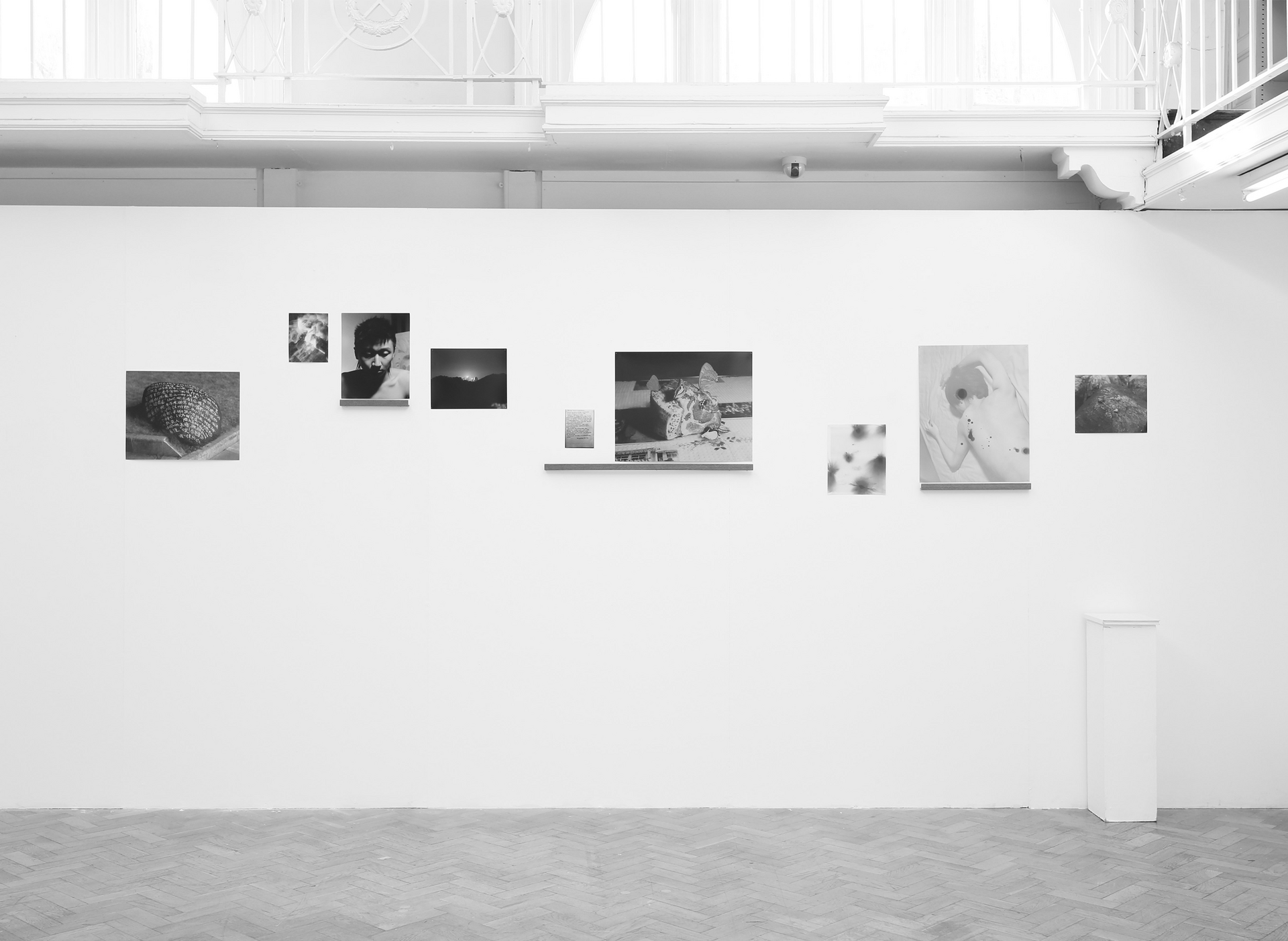 Selected works in the exhibition