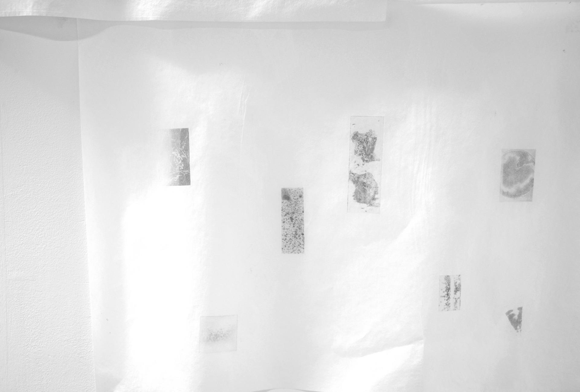 Fragmented Moments (details)