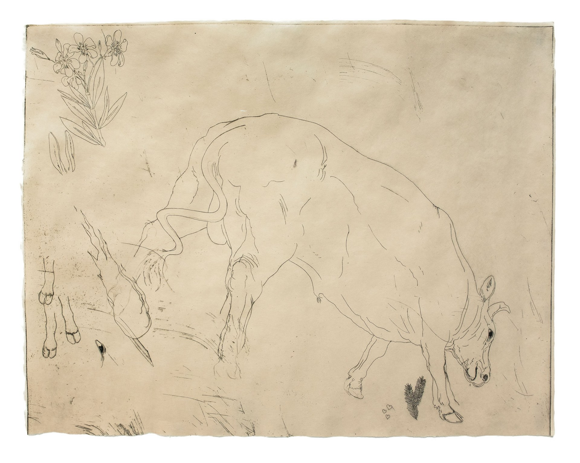 taxus, oleander, bunny, bull & 3 hearts, uwu
