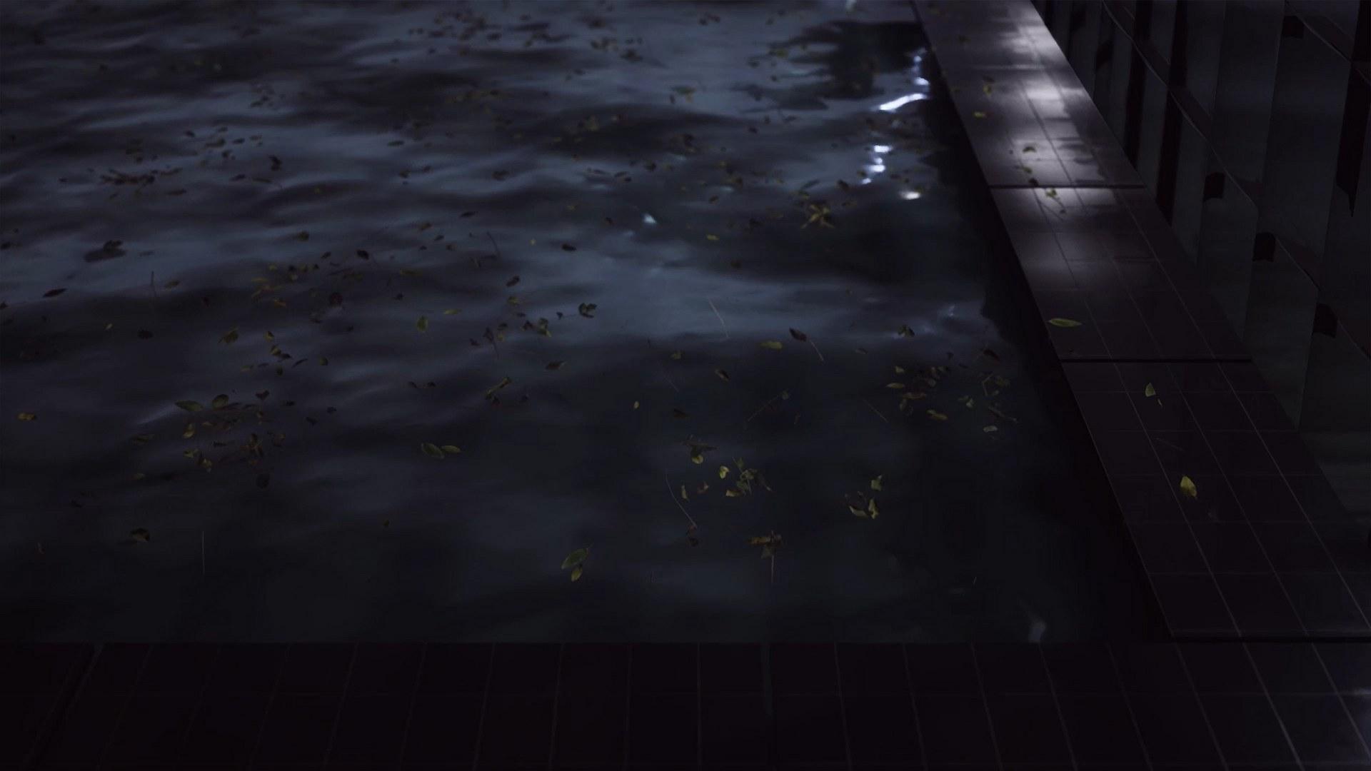 The Lido's Pool