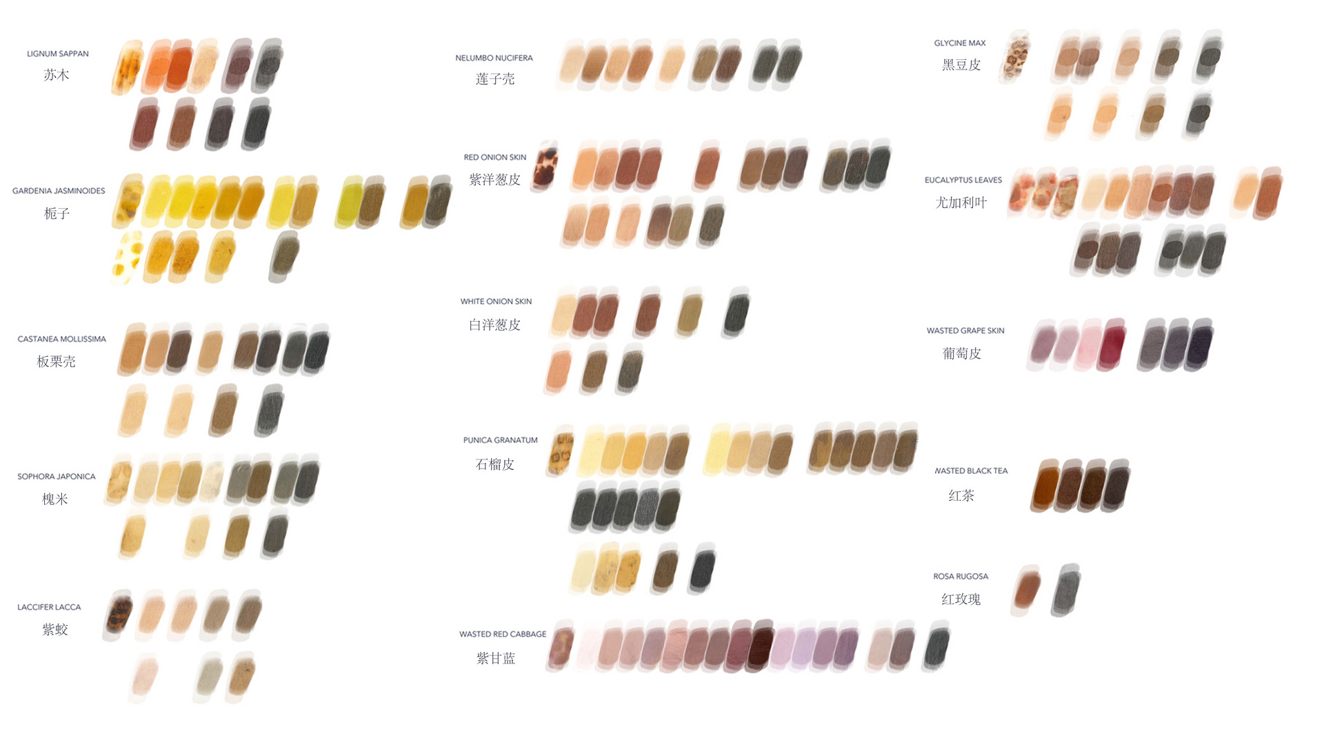 Colour experiments/ silk organza