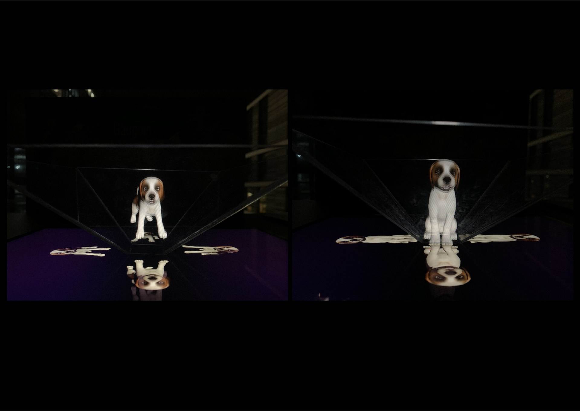 Refine the projector with dog animation