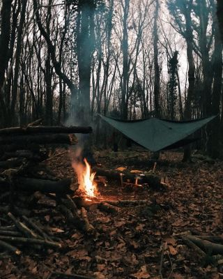 A campfire and hammock in some woods in autumn