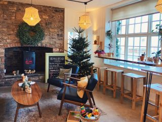 A view of the inside of a coffee shop with a Christmas tree and decorations
