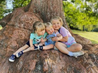 Three young girls sat on a large tree root