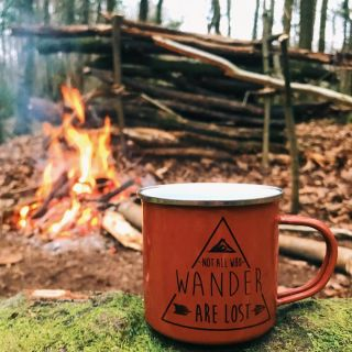 A mug sat on a log in front of a fire in the woods that reads: Not all who wander are lost.