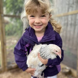 A little girl holding a chicken