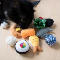 Cat-Toy-or-Treat_my3ubh