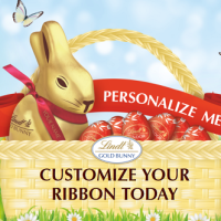 Customized-Ribbons-from-Lindt-Chocolate_ttw1us