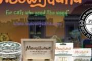 free-sample-meowijuana-catnip_e2qpri