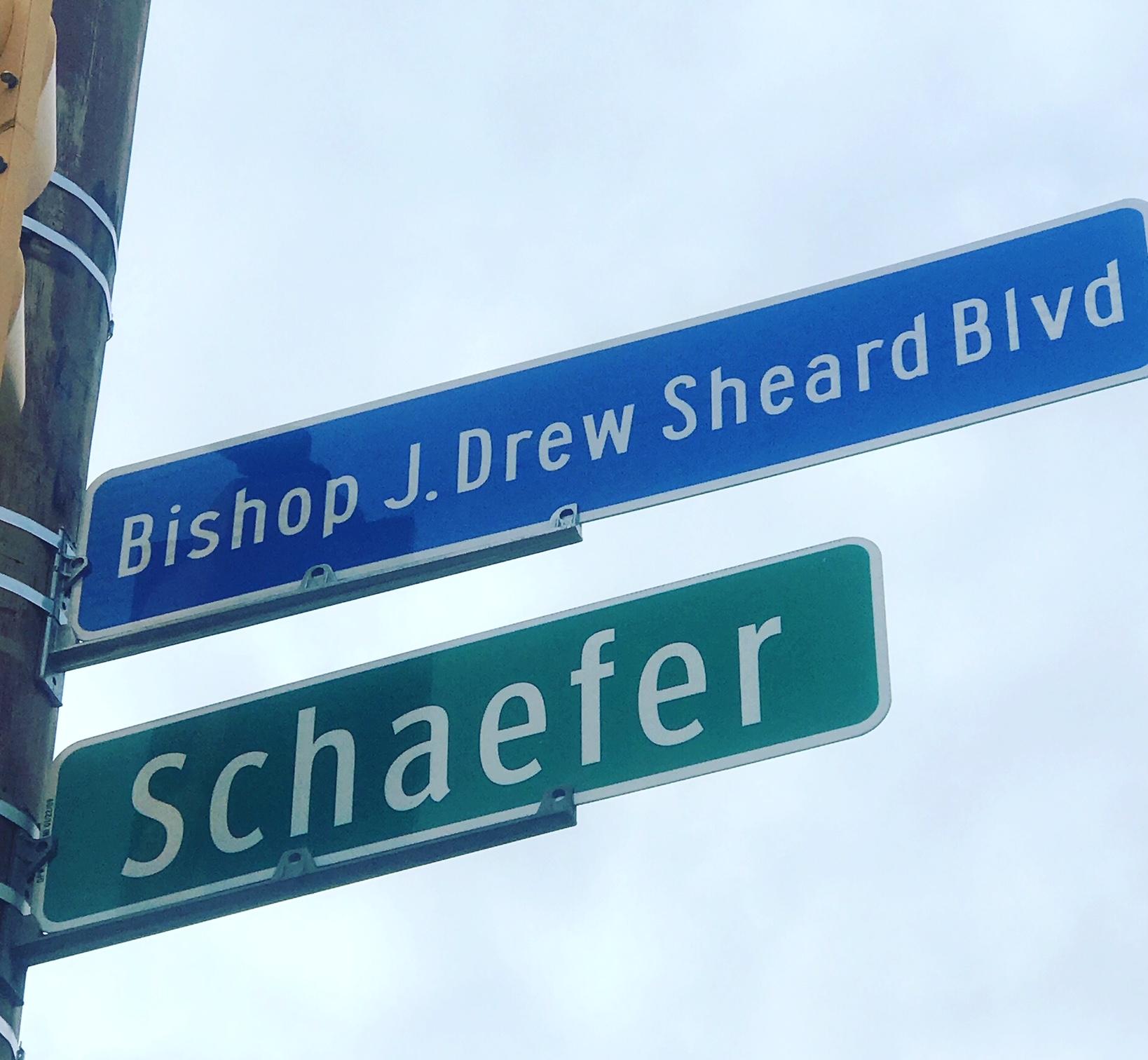 Sheard 2.jpg