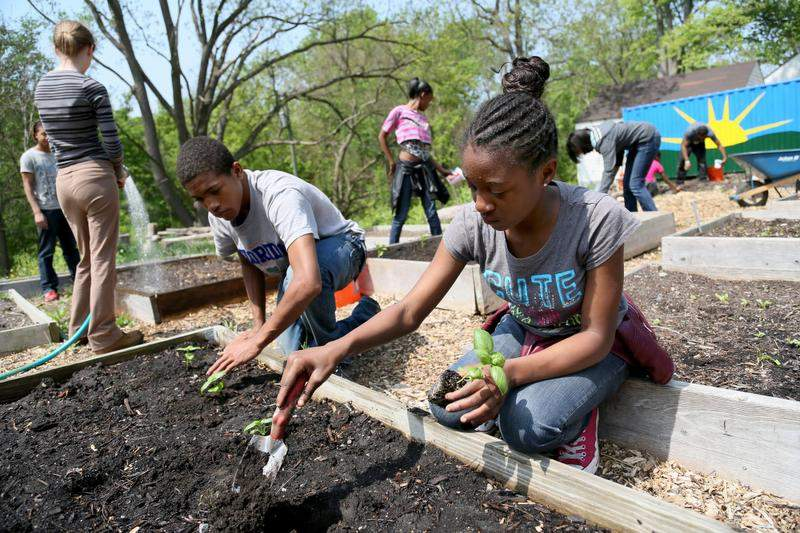Detroit Food Policy Council Sheds Light On Power Of Food In The City The Michigan Chronicle