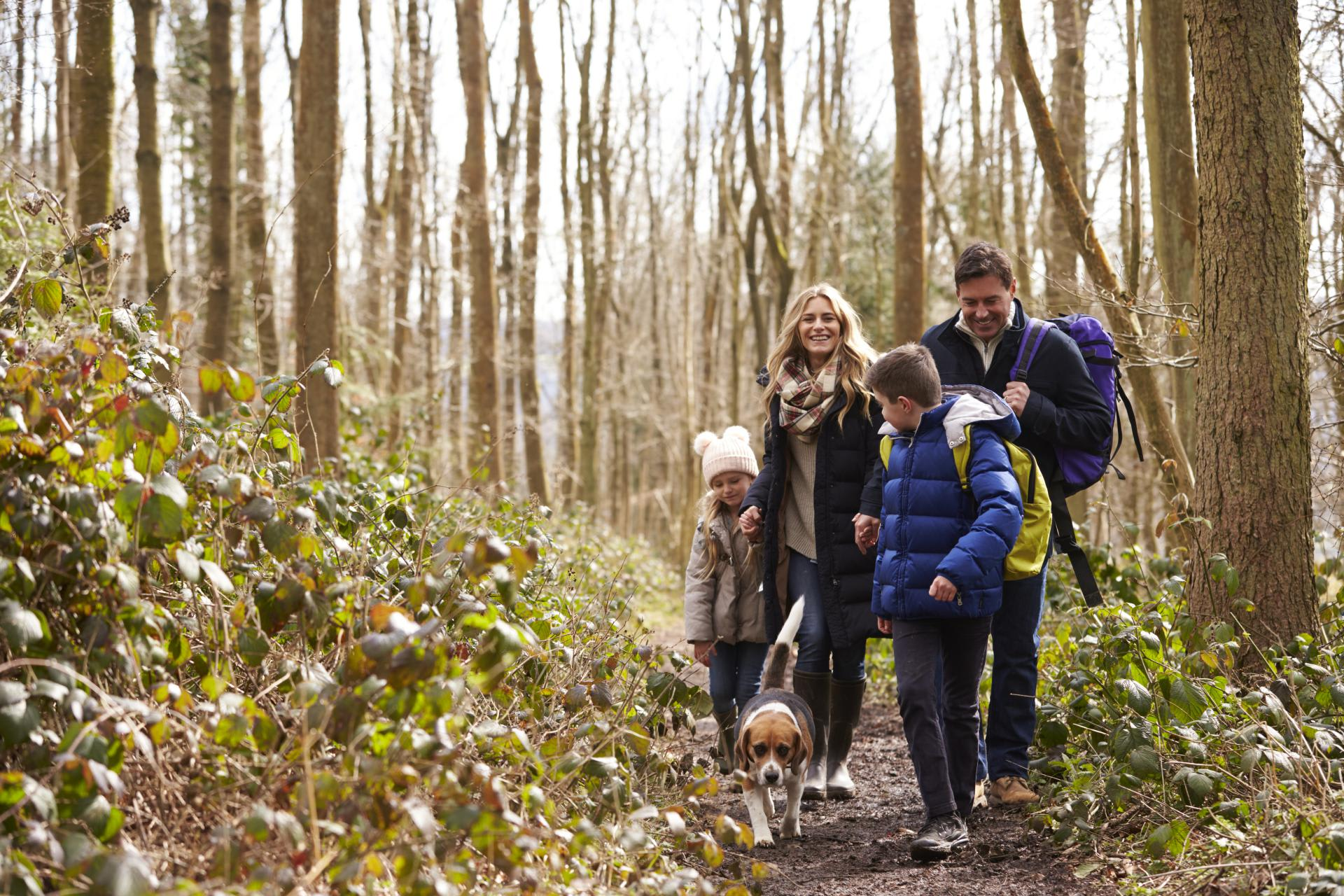 Six tips to get the most of active family hiking vacation in low ...