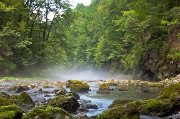 Visit to the Kupa river source will leave you in awe of beautiful nature surroundings