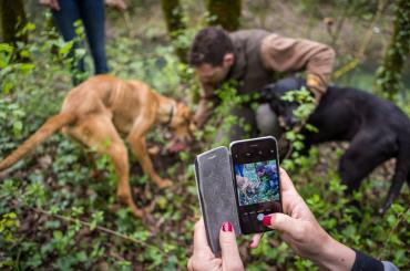 Truffles cannot be planted or tamed; but with a little help of intelligent animals, they can be found. Embark on a truffle hunting adventure with our guide and his dogs