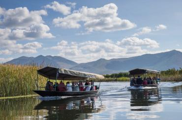 The photo-safari in a traditional boat on one of the last surviving authentic European wetlands
