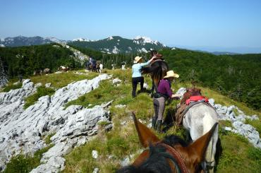 One of the highlights of this trip is a horseback riding adventure. We'll teach you how to ride!