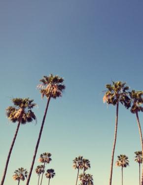 Melhor altura para visitar Califórnia