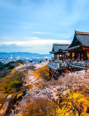 Quand partir Kyoto