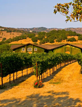 Best time to visit Napa Valley, CA