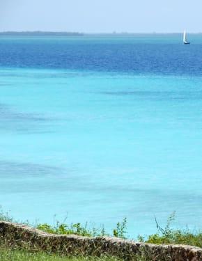 Quando andare Zanzibar
