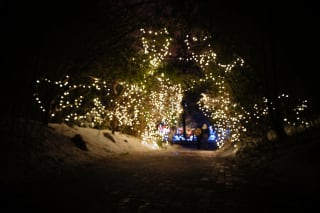 PNC Festival of Lights at Cincinnati Zoo