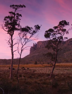 Best time to visit Tasmania