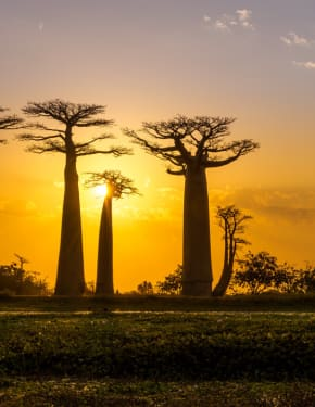 Best time to visit Madagascar