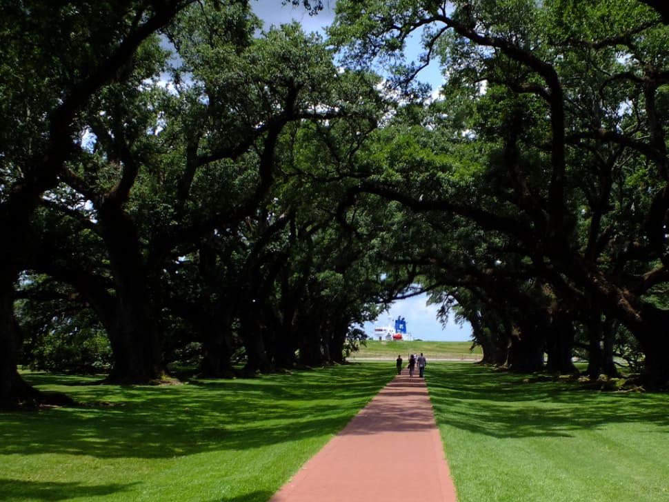 Plantation Pilgrimage in New Orleans - Best Season