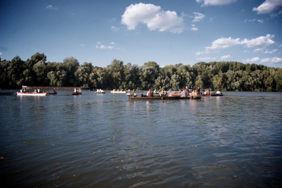 Best time for Blooming of the Tisza in Hungary