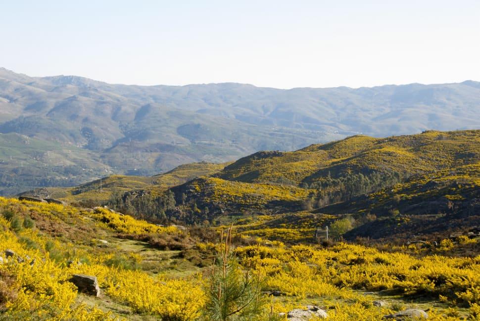 Peneda Geres National Park in Portugal - Best Time