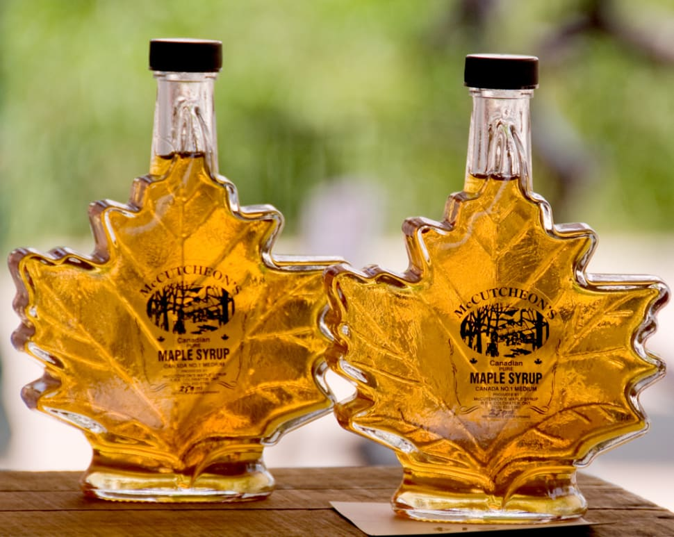 Fresh Maple Syrup in Toronto - Best Time