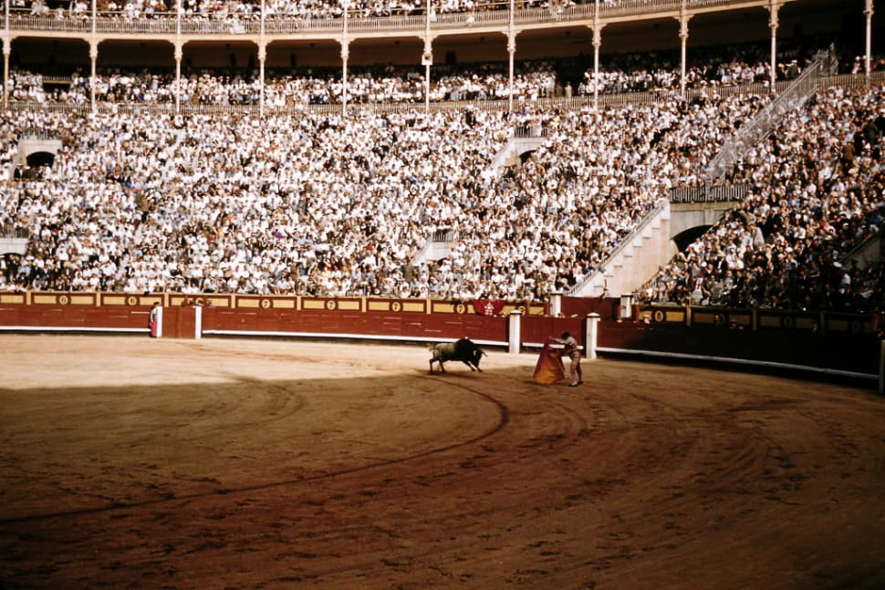 Best time for Bullfighting Season in Spain
