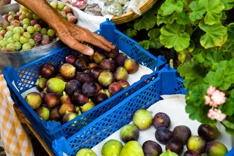 Best time for Figs in Cyprus