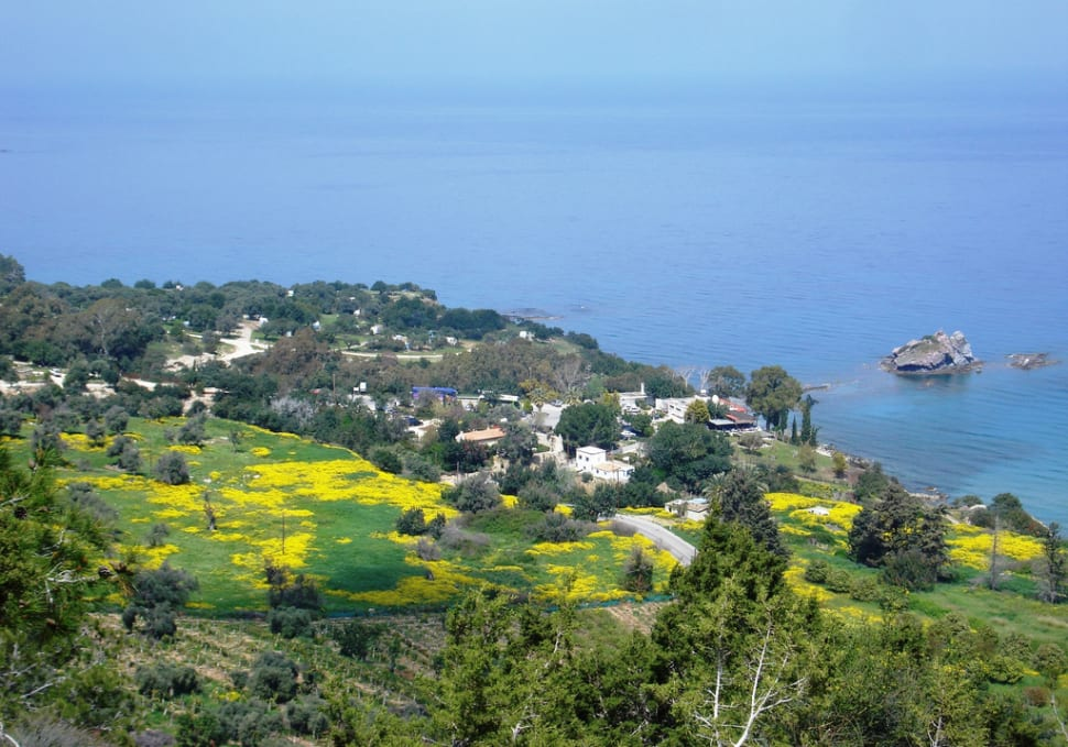 Best time for Aphrodite Trail Abloom in Cyprus