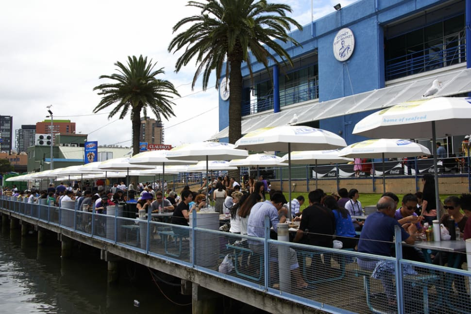 Best time for Sydney Fish Market in Sydney