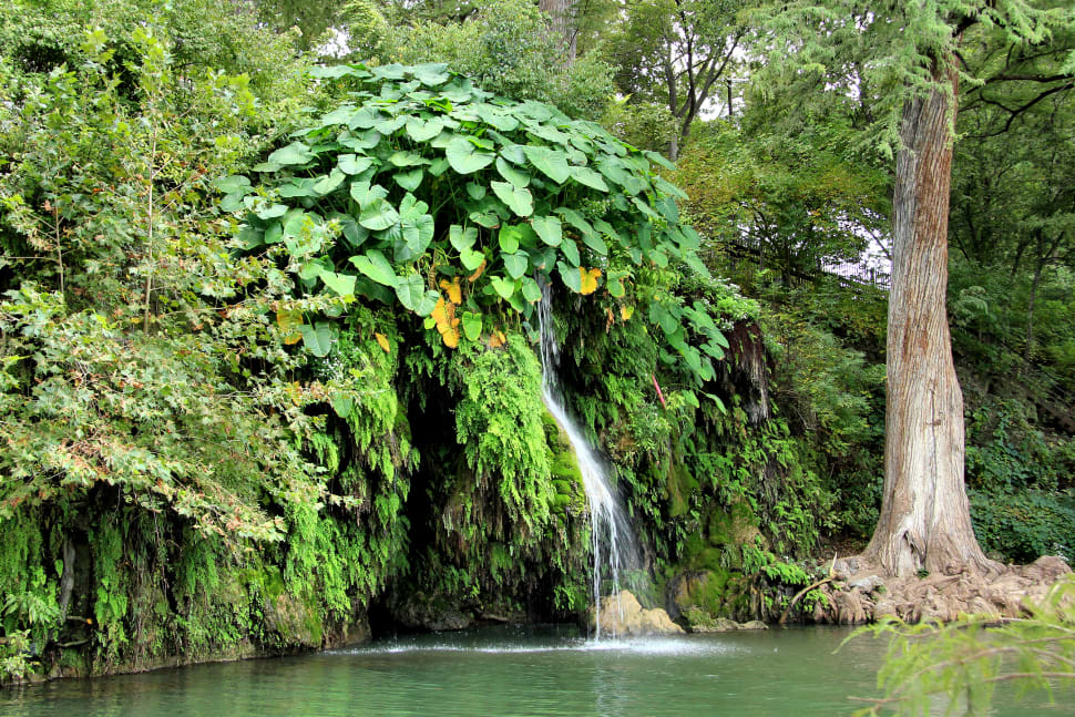 The natural pool at Krause Springs near Spicewood, Texas