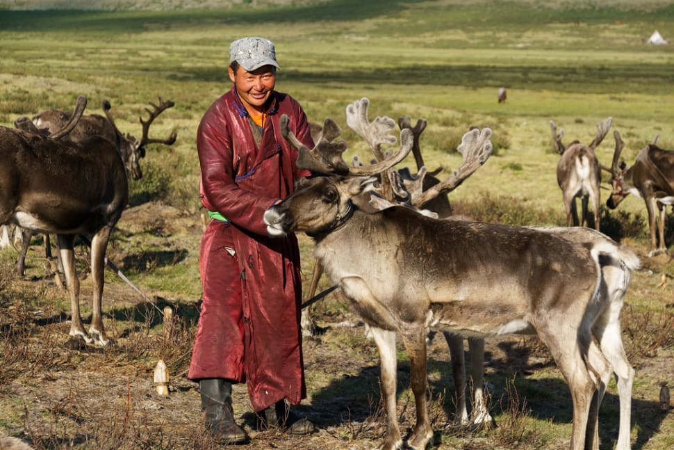 Best time to see Visiting Tsaatan Tribe in Mongolia