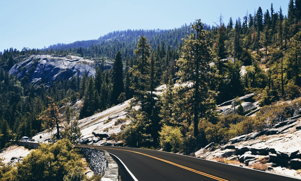 The road of Yosemite National Park