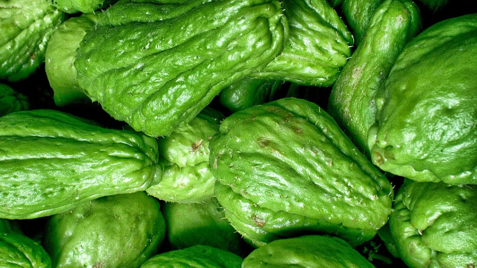 Chayote in Malta - Best Time