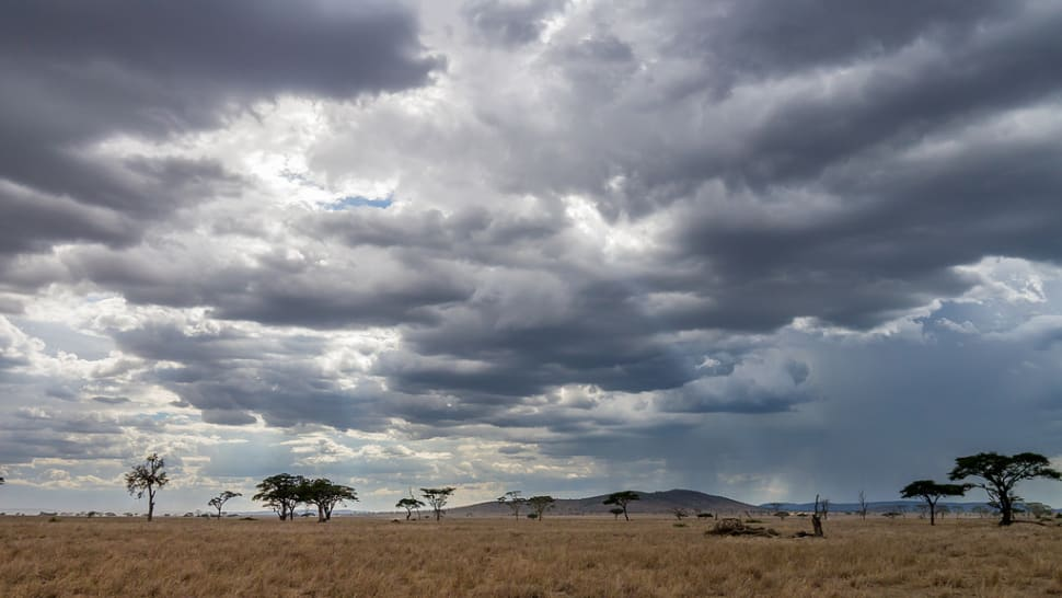 Short Rainy Season in Tanzania - Best Time